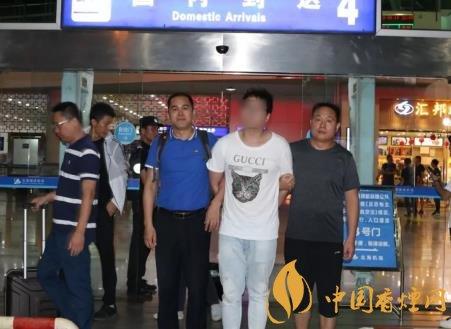 逃税香烟属于违法 广西一老板逃税上千万已被刑拘