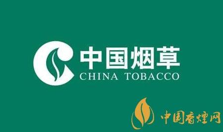 2020国家烟草春节招聘开始 高薪资待遇且不限专业!