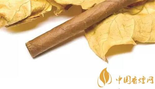 中式雪茄烟原料国产化的探索 未来可期