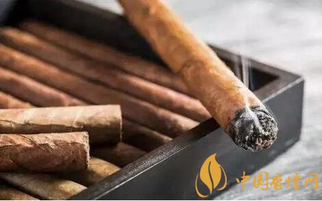 为什么你的雪茄有苦味 雪茄发苦有哪些原因