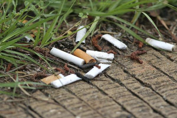 警告:吸烟会害死你和地球