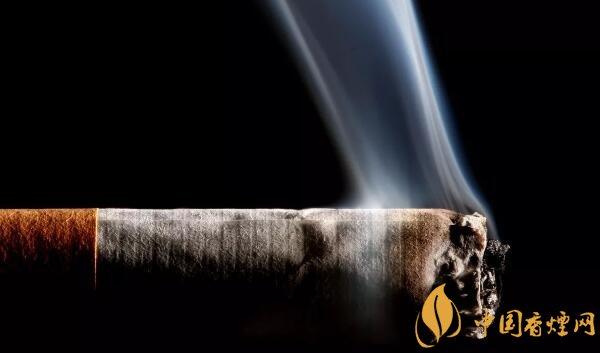 做烟的植物叫什么植物 烟草能自己种植吗(能)